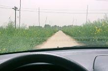 在路上 乡间小路 乡野狂想 美妙的感觉