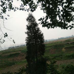 迪沟风景区旅游景点攻略图
