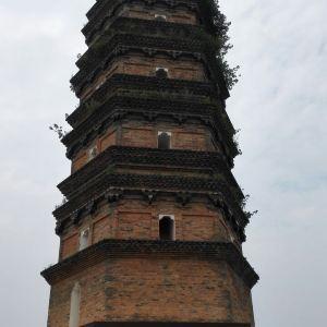 红塔旅游景点攻略图
