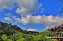 金马伦高原---山高路长景美