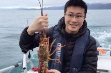 #向往的生活 在凯库拉做个渔民补龙虾