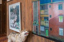 他把价值上千万的艺术品放进民宿里,吸引了一票文艺圈大咖