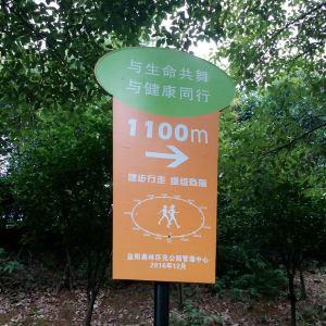 益阳奥林匹克公园旅游景点攻略图