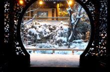 腊梅花凝雪,香染秦淮岸——金陵园林雪,美不似人间