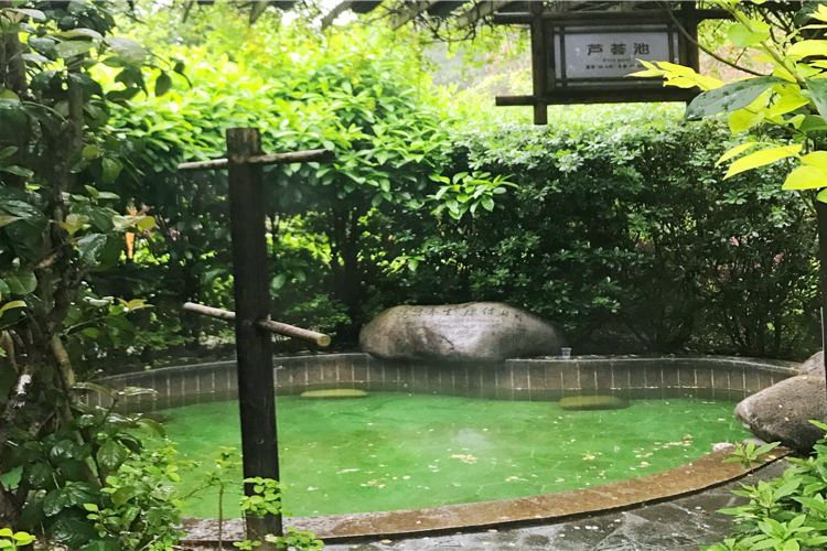 Zilongwan Hotspring International Hotel1