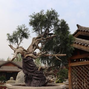 中国唐苑旅游景点攻略图