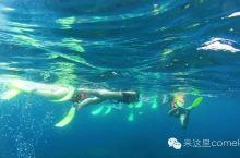 小众海岛深度游|三游马来西亚刁曼岛环岛浮潜全体验~人烟稀少的潜水天堂~持续更新