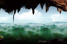 穿越祖国的热带雨林