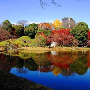 小石川后乐园旅游景点攻略图