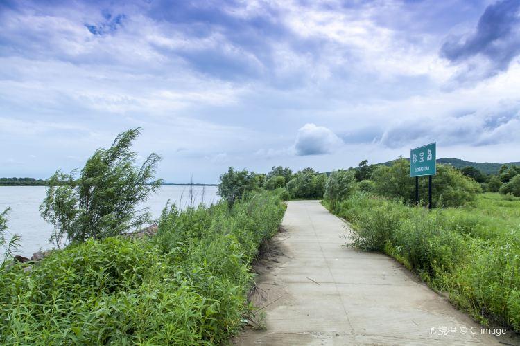 珍寶島濕地公園1
