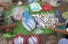 湄公河里的海鲜