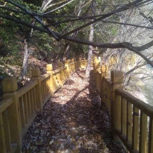 文县天池国家森林公园旅游景点攻略图