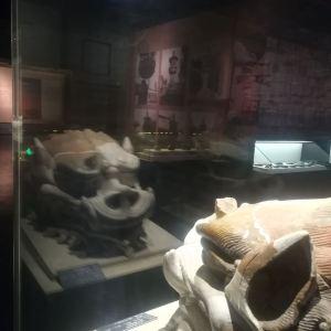 黑龙江省渤海上京遗址博物馆旅游景点攻略图