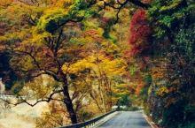 风景在路上