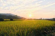 夕阳下的新农村