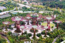#网红打卡地#带娃去新加坡亲子游的10个理由