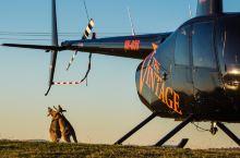打卡|乘着直升机观澳大利亚最具历史的葡萄产区
