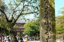 日本奈良「东大寺」