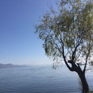 洱海月湿地公园旅游景点攻略图