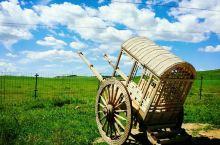 内蒙古呼和浩特当地向导小郑带您,徒步沙漠,穿越草原