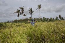 #向往的生活#汤加环岛自驾