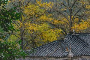 Yongzhou,Recommendations
