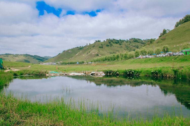 關山草原3