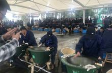 首届国际绍兴(嵊州)绿茶大会暨 第20届越乡龙井茶文化节