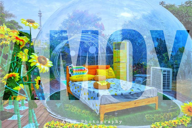 Xiamen Horticultural Expo Garden4