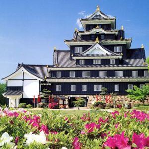 冈山城旅游景点攻略图