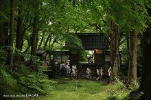 中尊寺是建于平安时期的寺庙群,那天匆匆一游中尊寺,来不及细细了解品味,却也被古刹的清幽打动。