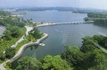 """被猴子占领的""""花果山"""" 相信大家都知道花果山吧,在日本有一个媲美于花果山的公园,不仅有丰富多彩的植物"""