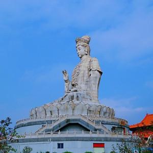 东莞游记图文-逃离城市,和孩子来一场森林治愈!