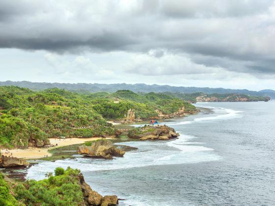 Pulau Kukup National Park
