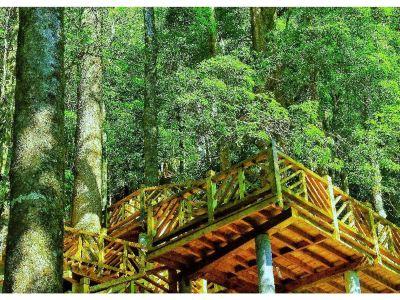 Hongdoushan Ecological Park