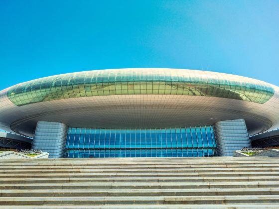 新疆國際會展中心
