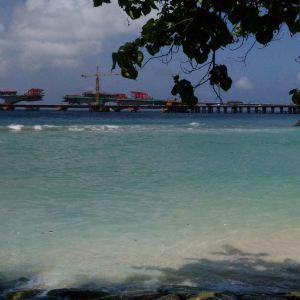 Artificial海滩旅游景点攻略图