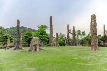 南通化石林:体验化石奇观