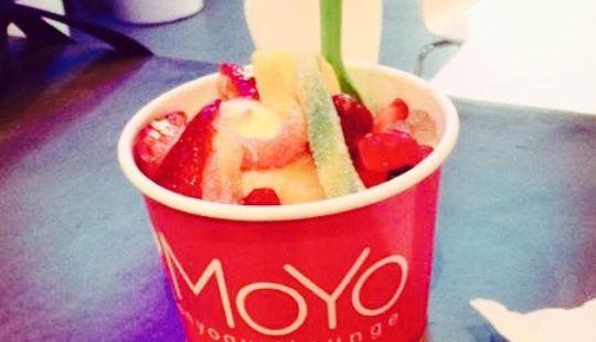 MoYo Frozen Yogurt Lounge
