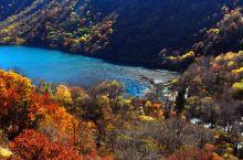 九寨沟周边游,在黑水彩林区看川西风景
