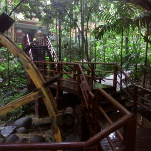 菠萝蜜苑西餐厅旅游景点攻略图