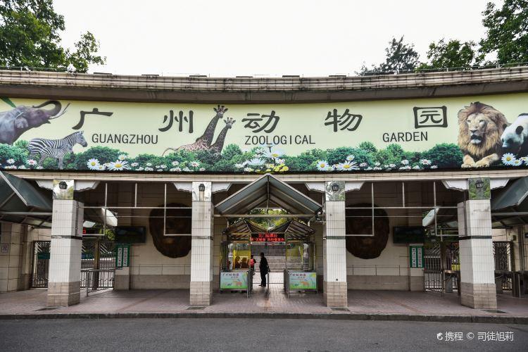 Guangzhou Zoo3