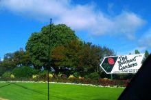 来到温哥华市郊的布查德花园啦
