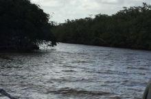 迈阿密大沼泽地国家公园