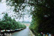 雨中的阿柔大寺,神圣庄严。
