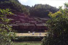 地扪侗族风情体验