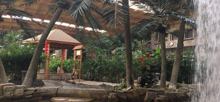 錦泰溫泉度假酒店生態餐廳3