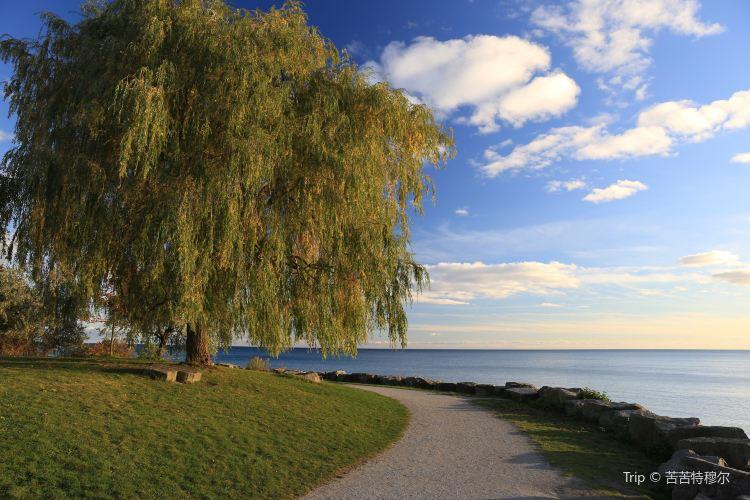 安大略湖1
