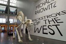 美国芝加哥市中心不知名艺术馆