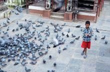 自由与信仰,最美尼泊尔